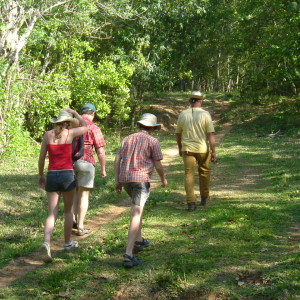 Walking on the wild side of Western Cuba-wild fruits and medicinal herbs