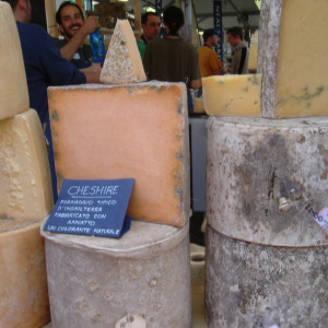 Personally guided tours of Slow Food events Salone del Gusto and Cheese at Bra
